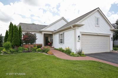 Huntley Single Family Home Contingent: 13381 Green Meadow Avenue