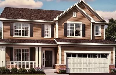 Plainfield Single Family Home For Sale: 12336 Dublin Lot#92 Lane