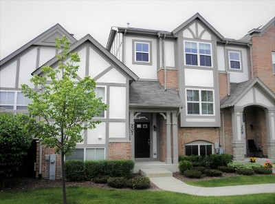 Lake Zurich Rental For Rent: 207 Rosehall Drive