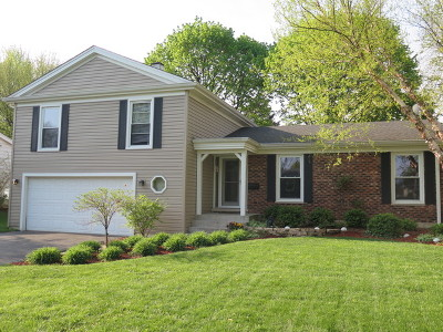 Downers Grove Single Family Home For Sale: 237 56th Street