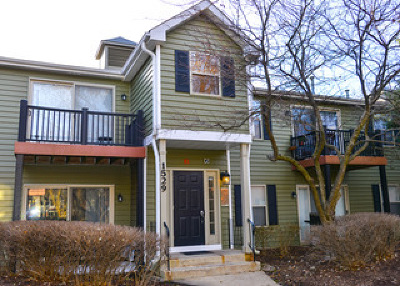 Naperville Condo/Townhouse For Sale: 1529 Raymond Drive #102