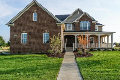 Plainfield Single Family Home For Sale: 12205 Sinclair (Lot 28) Drive