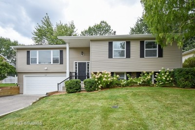 Lake Zurich Single Family Home For Sale: 255 Red Bridge Road