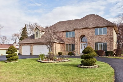 Crete Single Family Home For Sale: 24241 South Shady Oaks Trail