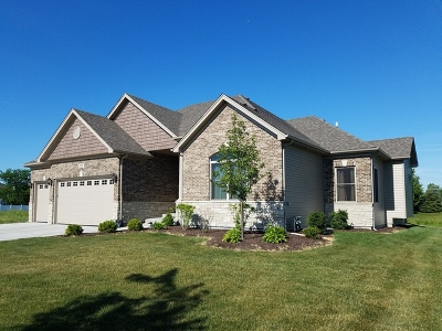 Naperville Single Family Home For Sale: 4103 Chinaberry Lane