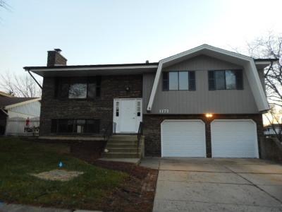 Schaumburg Single Family Home For Sale: 1171 Saylesville Lane