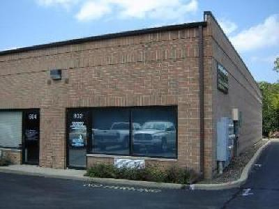 Roselle Commercial For Sale: 880 West Lake Street #802