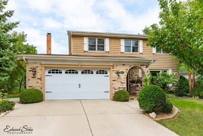 Mount Prospect Single Family Home For Sale: 515 South Marina Drive
