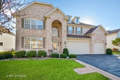 Naperville Single Family Home For Sale: 792 Sigmund Road