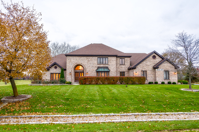 Winfield Single Family Home For Sale: 28w335 Picardy Court