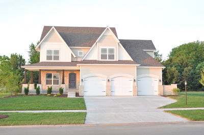Plainfield Single Family Home For Sale: 13259 Wellesley Circle