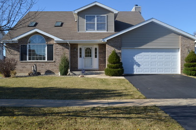 Beecher Single Family Home For Sale: 1606 Fox Hound Trail