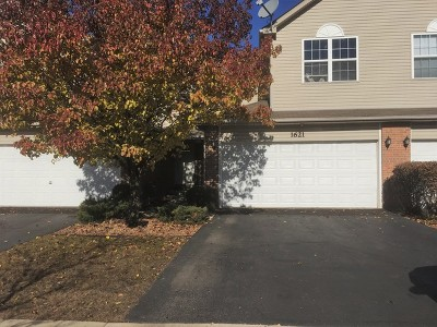 Naperville Condo/Townhouse For Sale: 1621 Windward Court