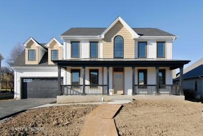 Elburn Single Family Home For Sale: 694 Ridge Drive