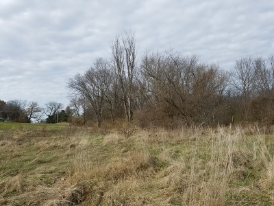 Ogle County Residential Lots & Land For Sale: 000 South Daysville Road