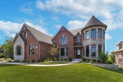 St. Charles Single Family Home For Sale: 39w473 Longmeadow Lane