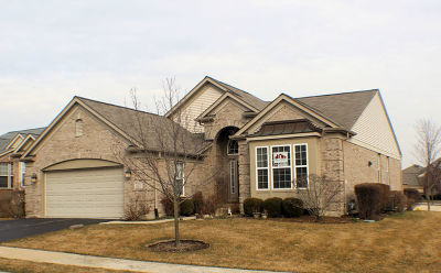 Orland Park Single Family Home For Sale: 9351 Dunmore Drive