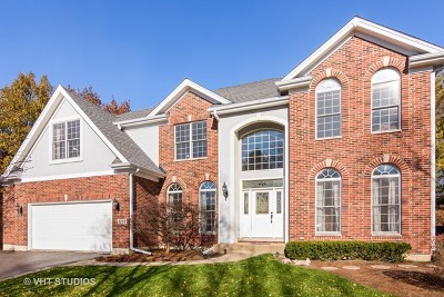 Palatine Single Family Home For Sale: 1286 North Lakeview Drive