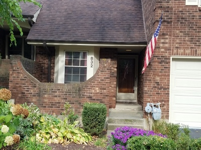 Glen Ellyn Condo/Townhouse For Sale: 832 North Driveway