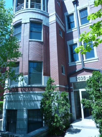 Rental For Rent: 2032 West Pierce Avenue #3W
