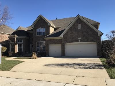 Streamwood Single Family Home For Sale: 417 Elderberry Lane