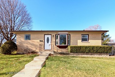 Palatine Single Family Home For Sale: 14 North Forest Avenue