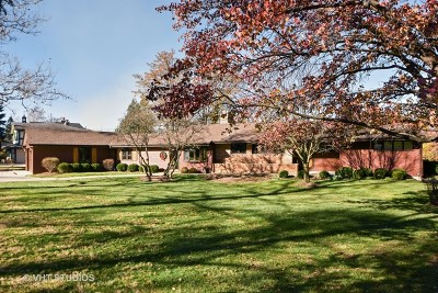 Palos Park Single Family Home For Sale: 8802 121st Street