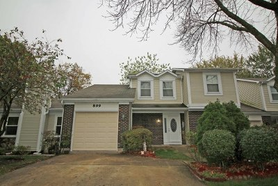 Schaumburg Condo/Townhouse For Sale: 899 Colony Lake Drive
