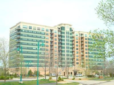 Woodridge Condo/Townhouse For Sale: 6420 Double Eagle Drive #1005