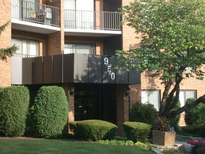 Palatine Condo/Townhouse For Sale: 950 East Wilmette Road #217