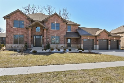 Lake Zurich Single Family Home For Sale: 245 Mark Lane