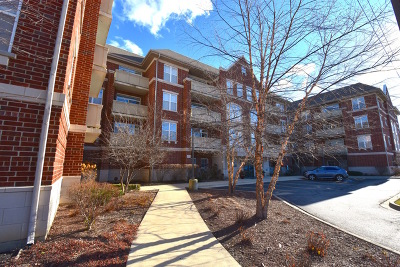 Palatine Condo/Townhouse For Sale: 77 North Quentin Road #405