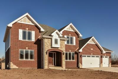 Mokena Single Family Home For Sale: 11902 Heinecke Drive