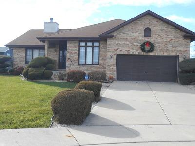Hazel Crest Single Family Home For Sale: 3115 Surrey Lane