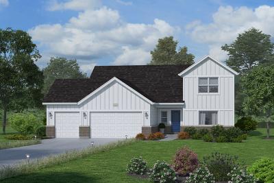 Plainfield Single Family Home For Sale: 26617 Grande Poplar Court
