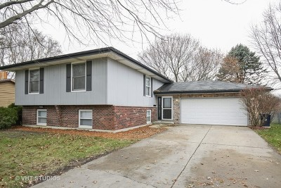 Elgin Single Family Home For Sale: 890 Clayton Avenue