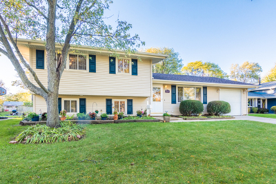 Schaumburg Single Family Home For Sale: 214 Jeffery Lane