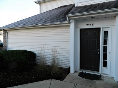 Naperville Rental For Rent: 2963 Stockton Court #2963