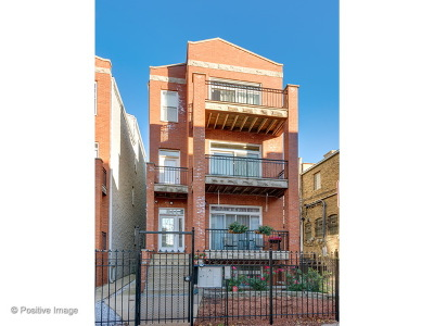 Chicago Condo/Townhouse New: 811 North Bishop Street #2