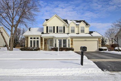 Schaumburg Single Family Home For Sale: 2416 Fabish Court