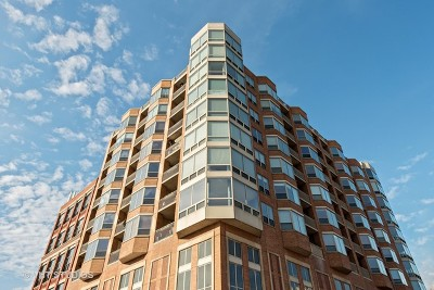 Chicago Condo/Townhouse New: 720 West Randolph Street #1108