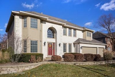 Naperville Single Family Home For Sale: 523 Gateshead Drive