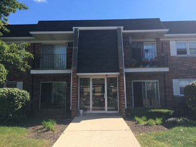 Downers Grove Rental For Rent: 2415 Ogden Avenue #2