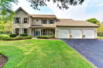 Naperville Single Family Home For Sale: 23764 Deer Chase Lane
