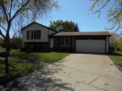 Richton Park Single Family Home For Sale: 22642 Clarendon Avenue