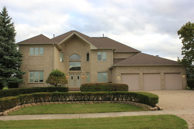 Tinley Park Single Family Home For Sale: 19 Odyssey Drive