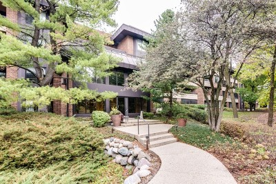 Hinsdale Condo/Townhouse For Sale: 1409 Burr Oak Road #207A