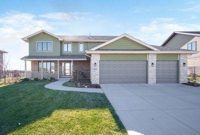 Tinley Park Single Family Home For Sale: 8641 Fairfield Lane