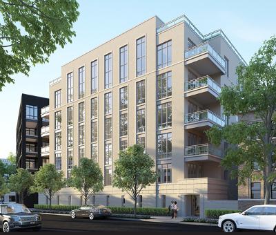 Chicago Condo/Townhouse New: 2753 North Hampden Court #2C