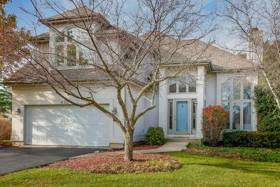 Glen Ellyn Single Family Home For Sale: 832 Glencoe Street